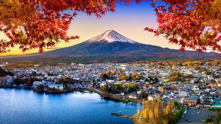momijigari learn academy aprender japonés
